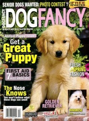 Dog-Fancy